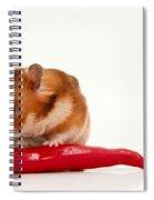 Hamster Eating A Red Hot Pepper Spiral Notebook