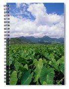 Hanalei Valley Taro Field Spiral Notebook