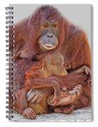 Hands And Feet Spiral Notebook
