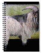 Handsome Pygmy Goat Spiral Notebook