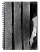 Handsome T Spiral Notebook