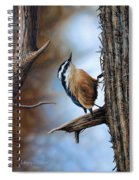 Hangin Out - Nuthatch Spiral Notebook