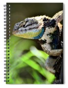 Hangin' Out  Spiral Notebook
