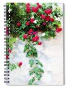 Hangin Roses Spiral Notebook