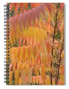 Hanging Fire Spiral Notebook