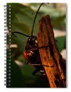 Hanging On For Life Spiral Notebook