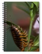 Hanging On Hanging In There Spiral Notebook