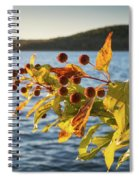Hanging Out At The Lake Spiral Notebook