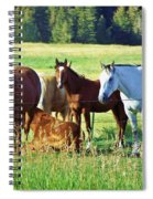 Hanging Out Spiral Notebook