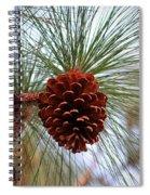 Hanging  Pine Cone Spiral Notebook