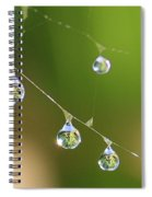Hanging Plants Spiral Notebook