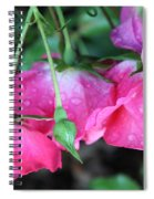 Hanging Roses Spiral Notebook