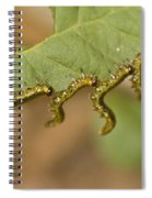 Hanging There Spiral Notebook
