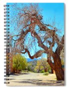 The Hanging Tree In Cerrillos In New Mexico  Spiral Notebook