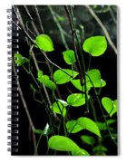 Hanging Vines Spiral Notebook