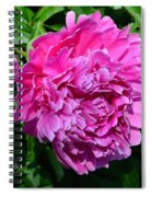 Happiness In Color Spiral Notebook