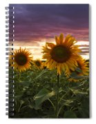Happiness Is A Field Of Sunflowers Spiral Notebook