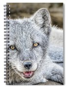 Happy Arctic Fox Spiral Notebook