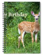 Happy Birthday 1 Spiral Notebook