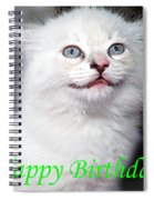 Happy Birthday Kitty Spiral Notebook