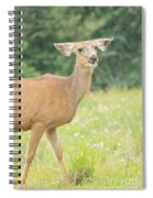 Happy Deer Spiral Notebook