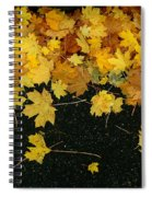 Happy Fall Spiral Notebook