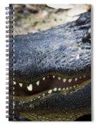 Happy Florida Gator Spiral Notebook