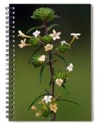 Happy Flowers Spiral Notebook