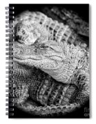 Happy Gator Black And White Spiral Notebook