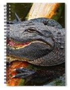 Happy Gator Spiral Notebook