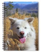 Be The Reason Someone Smiles Today Spiral Notebook