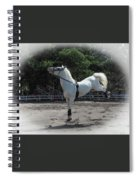 Happy Horse Spiral Notebook