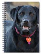 Happy Lab Spiral Notebook