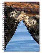 Happy Valentines Day Spiral Notebook