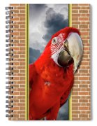 Happy Red Parrot Spiral Notebook