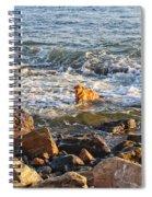 Happy Retreiver Spiral Notebook