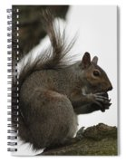 Happy Squirrel Spiral Notebook