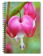 Happy Valentine's Day Spiral Notebook