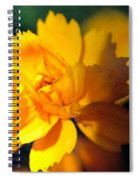 Happy Yellow Flower Spiral Notebook