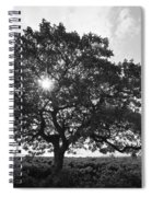 Hapuna Beach Park Spiral Notebook