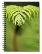 Hapuu Fern Spiral Notebook