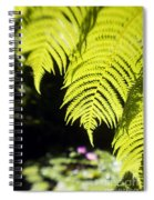 Hapuu Ferns Spiral Notebook