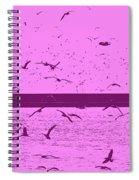 Harbor Gulls Purple Spiral Notebook