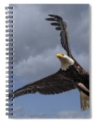 Hard Banking Eagle Spiral Notebook