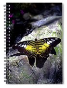 Hard Landing--clipper Butterfly Spiral Notebook