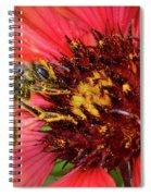 Hard Working Bee By Debra Martz Spiral Notebook