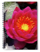 Hardy  Day Water Lily Spiral Notebook