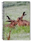 Hare 2 Day Spiral Notebook
