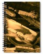 Harmony I I Spiral Notebook