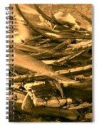 Harmony I I I Spiral Notebook